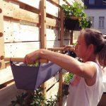 PDJ : 14 août – Super®Bag, la solution pour le jardinage urbain