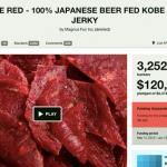Crowdfunding : Une fraude à $120 000 décélée sur Kickstarter