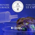 [CAMPAGNE] « Comprendre les coraux pour combattre le cancer »