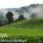 PDJ : 25 septembre – KUMVA : entre passé, présent et avenir au Rwanda