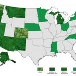 [PLATEFORME] Une plateforme dédiée à l'industrie du cannabis aux Etats-Unis