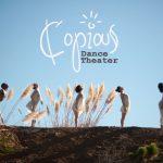 PDJ 28 octobre : La Conférence des oiseaux, entre tradition et danse contemporaine