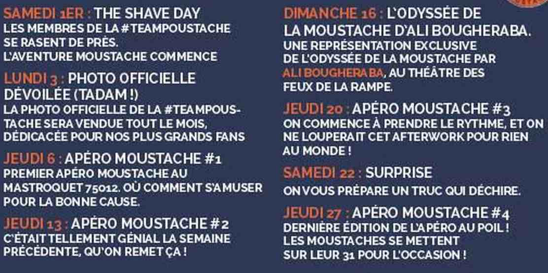 programme teampoustache