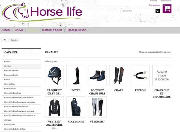Horse Life, projet crowdfunding