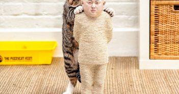 Cat Kim Jong-Un