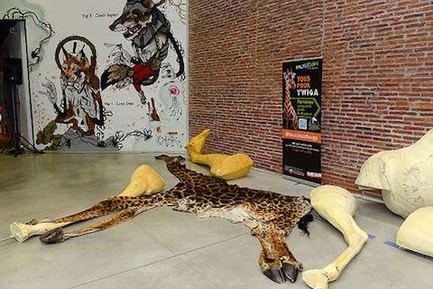 Twiga la girafe