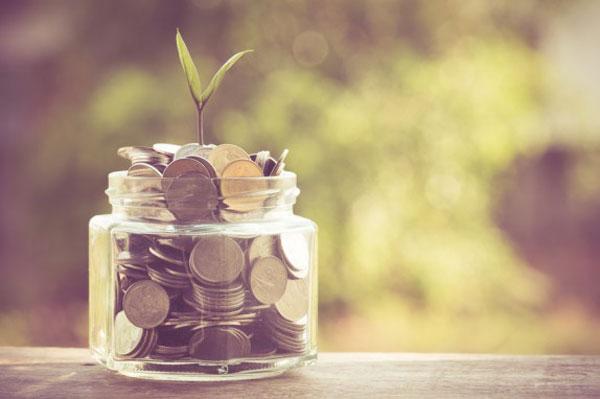 Crowdfunding-plante