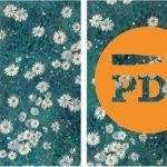 PDJ 12 avril : Participez à l'acquisition de Parterre de marguerites de Gustave Caillebotte pour le musée des impressionnismes Giverny