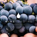 [LANCEMENT] WineFunding, la plateforme de crowdfunding experte du vin