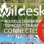 PDJ 1 juillet : WildOne, vivez l'expérience du travail au vert !