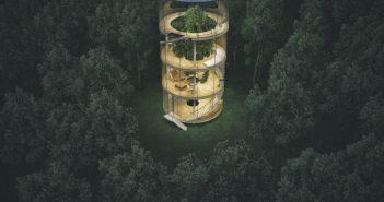 glass house around a tree