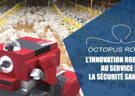 Octopus Robots lance une campagne pour lever des fonds avec smartangels